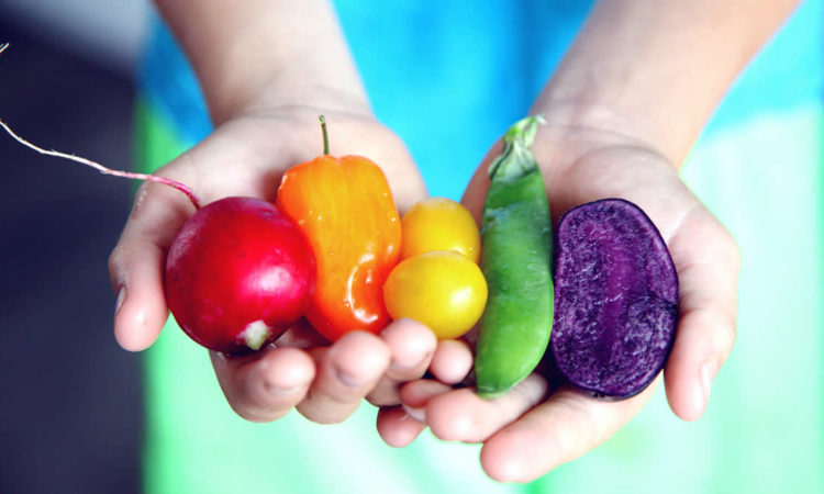 Child's hands holding vegetables